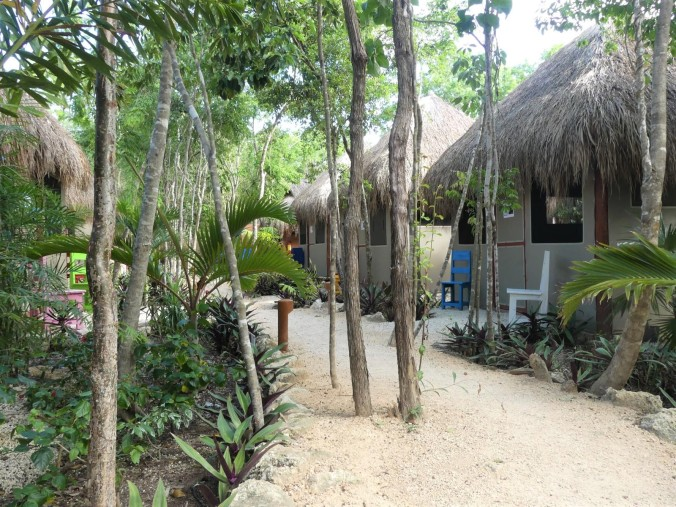 Tulum und Cenote (8)