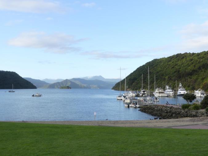 Nelson_Picton_Marlborough Sound (72)